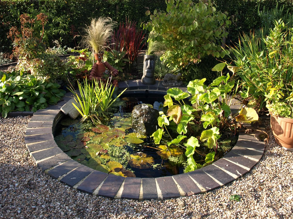 Louise hardwick garden design creating gardens to enjoy for Still pond garden design